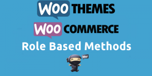 WooCommerce Role Based Methods