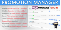 WooCommerce Promotion Manager